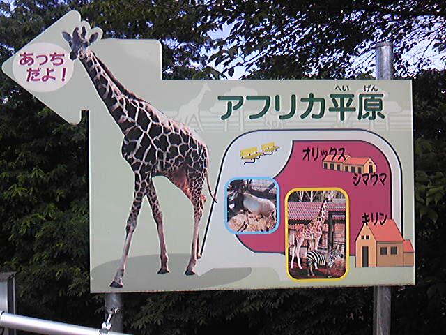 長野 茶臼山動物公園のそら
